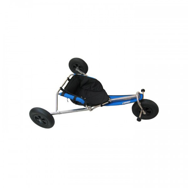 Buggy competition standart